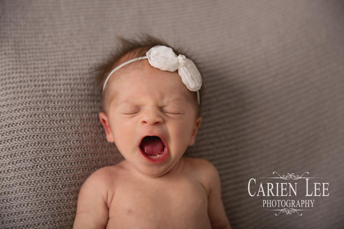 Screech Family newborn session