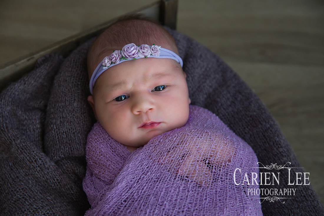 Freeden Family and Newborn session-7